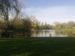 View of the Park, photo credit: Leah Osbourne, 2011