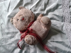 My Teddy Bear, called Ted Ted