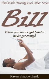 Cover art for Bill, third in the Meeting Each Other Series