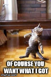 strutting cat meme