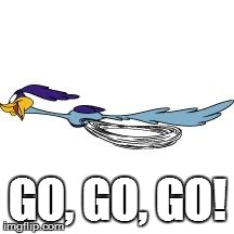 Road runner 'go' meme